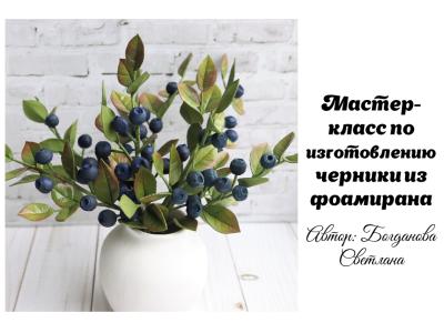 МК Черника_01