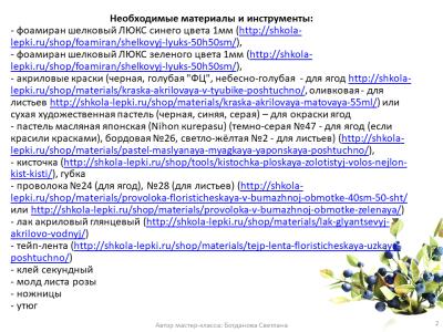 МК Черника_02