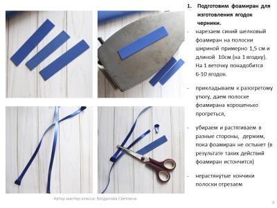МК Черника_03