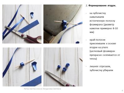 МК Черника_04
