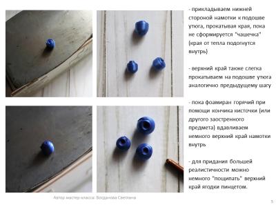 МК Черника_05