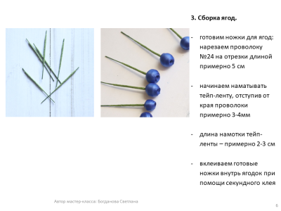 МК Черника_06