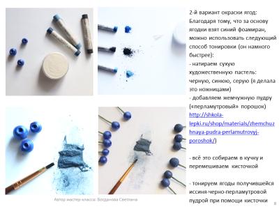 МК Черника_08