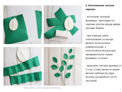 МК Черника_09