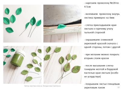 МК Черника_10