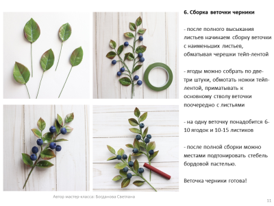МК Черника_11