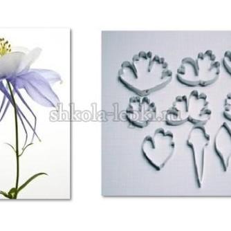 26a32174dc65d6cf4060420dc3lf—materialy-dlya-tvorchestva-kattery-akvilegiya-eustoma