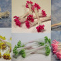 ручная работа, handmade, Ярмарка Мастеров,тычинки,тычинки для цветов,тычинки,тычинки тайские,тычинки для цветов,тычинки японские,тычинки маленькие,тычинки большие,тычинки круглые,тычинки купить,тычинки фактурные,тычинка,Таиланд,материалы для творчества,материалы из таиланда,my thai,бесплатная доставка