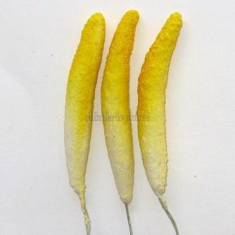 пестик антуриум/калла