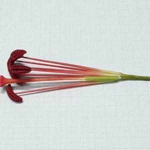Тычинки для лилии 6+1 лепные ручной работы