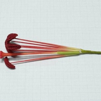 Тычинки для лилии лепные, 6 + 1