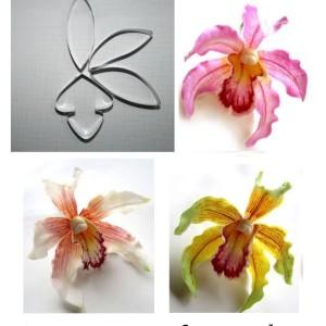 Каттер орхидея цимбидиум insigne