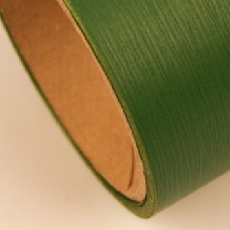 Аспидистра лента 8 см цвет зеленый хаки