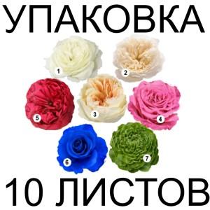 Фоамиран «Шелковый» ЛЮКС 10 листов