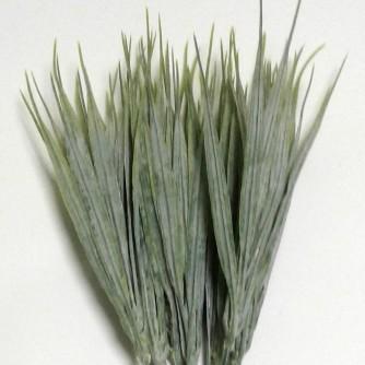 Зелень трава пырей #73397 (на фото 7 веточек)