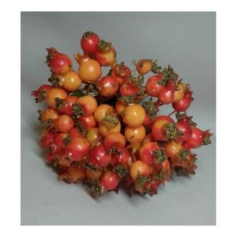 ветка шиповника, желто-красный (на фото пучок из шести веток)