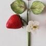 ягоды 3