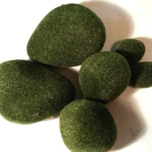 Моховые камни в наборе 6 шт
