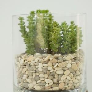 Камешки морские декоративные для заполнения ваз