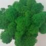 Ягель натуральный зеленый